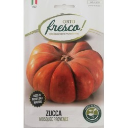 ZUCCA MOSQUEE PROVENCE