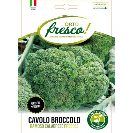 CAVOLO BROCCOLO RAMOSO CALABRESE PRECOCE